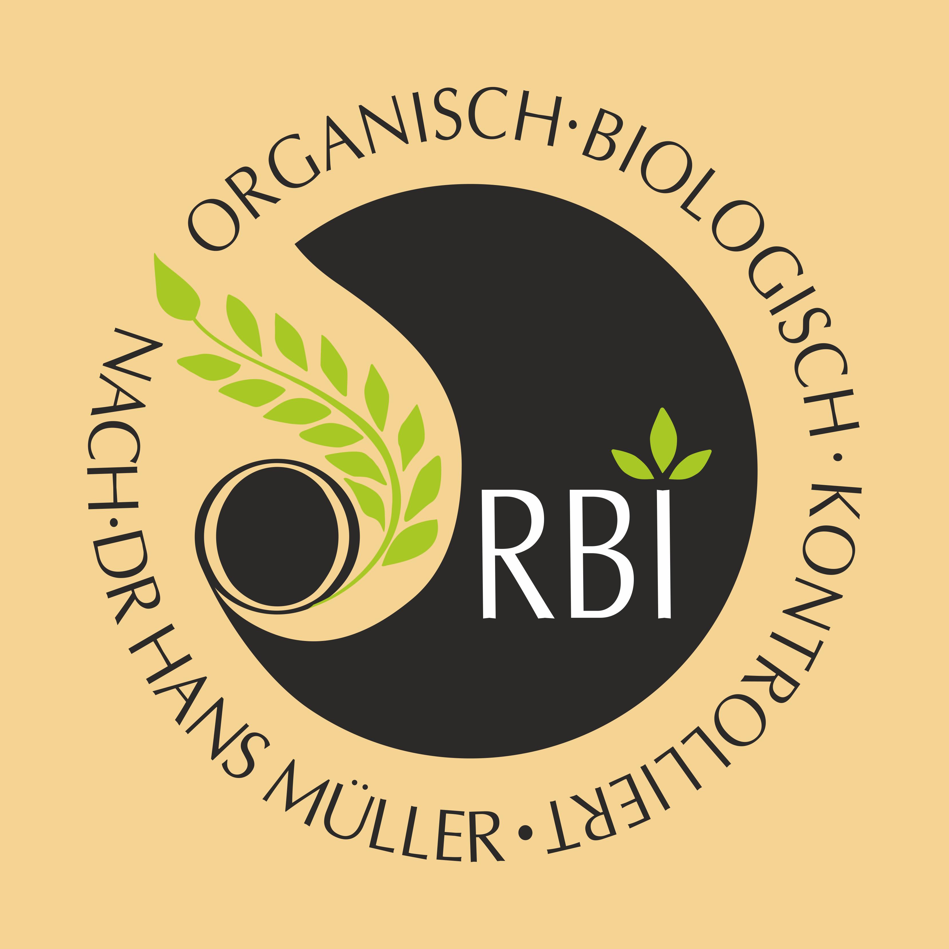 Orbi Logo Farbe mit Hintergrund